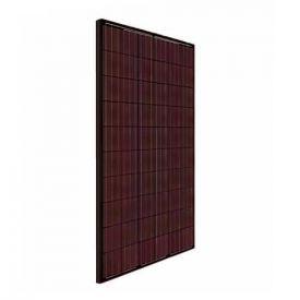 BISOL Spectrum panneau solaire polycristallin 255Wc rouge - BMU-255