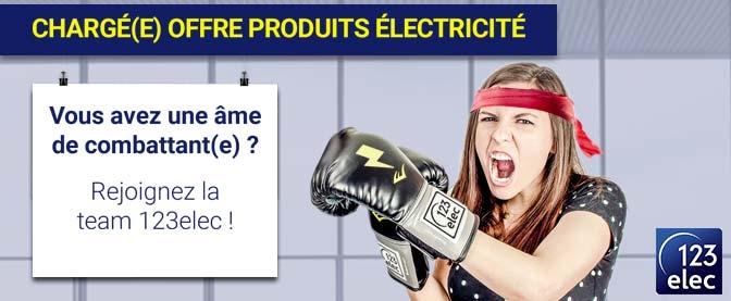 Recrutement 123elec, Chargé(e) offre produits électricité